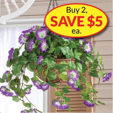 Buy 2 Hanging Baskets, Save $5