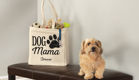 For the Pet Lover