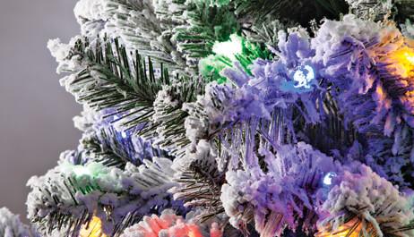 Ornaments & Trees