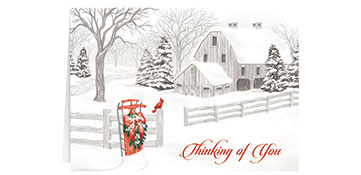 Holiday Cards --