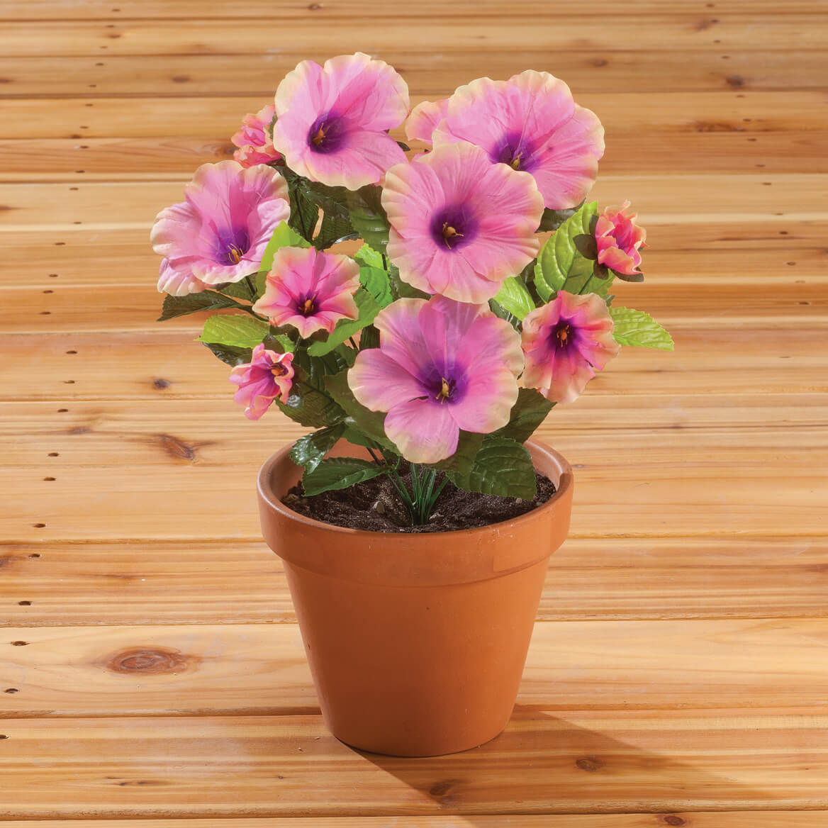 Petunia Bush by OakRidge™-341461