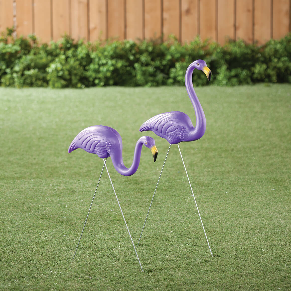 The Original Featherstone Flamingo, Set of 2-358440