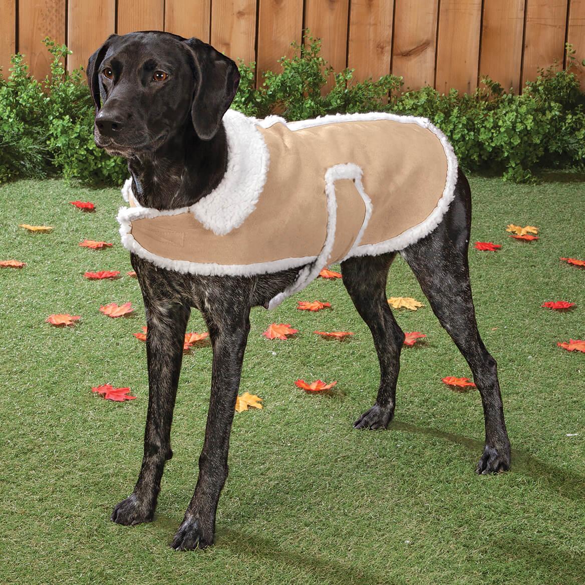 Sherpa Dog Coat-363597