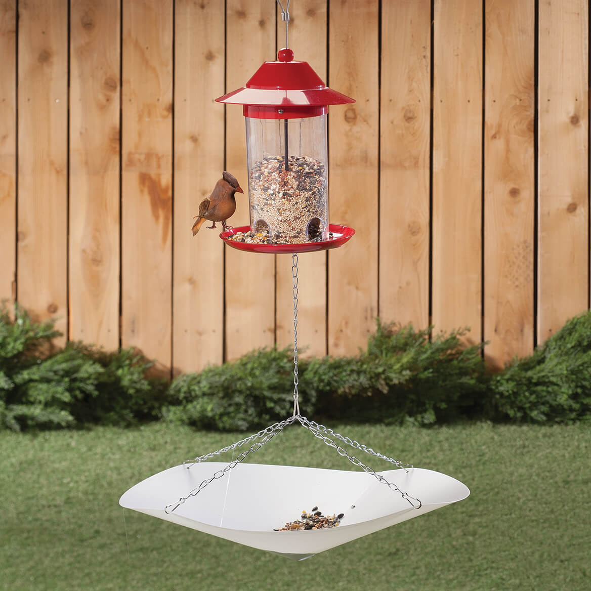 Bird Seed Catcher-366637