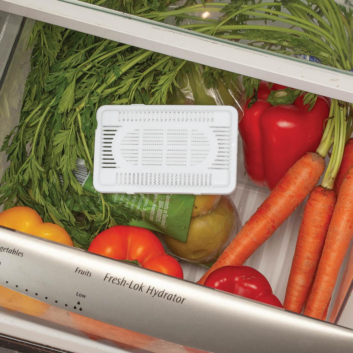 Fridge and Freezer Refresher Set of 4-369663