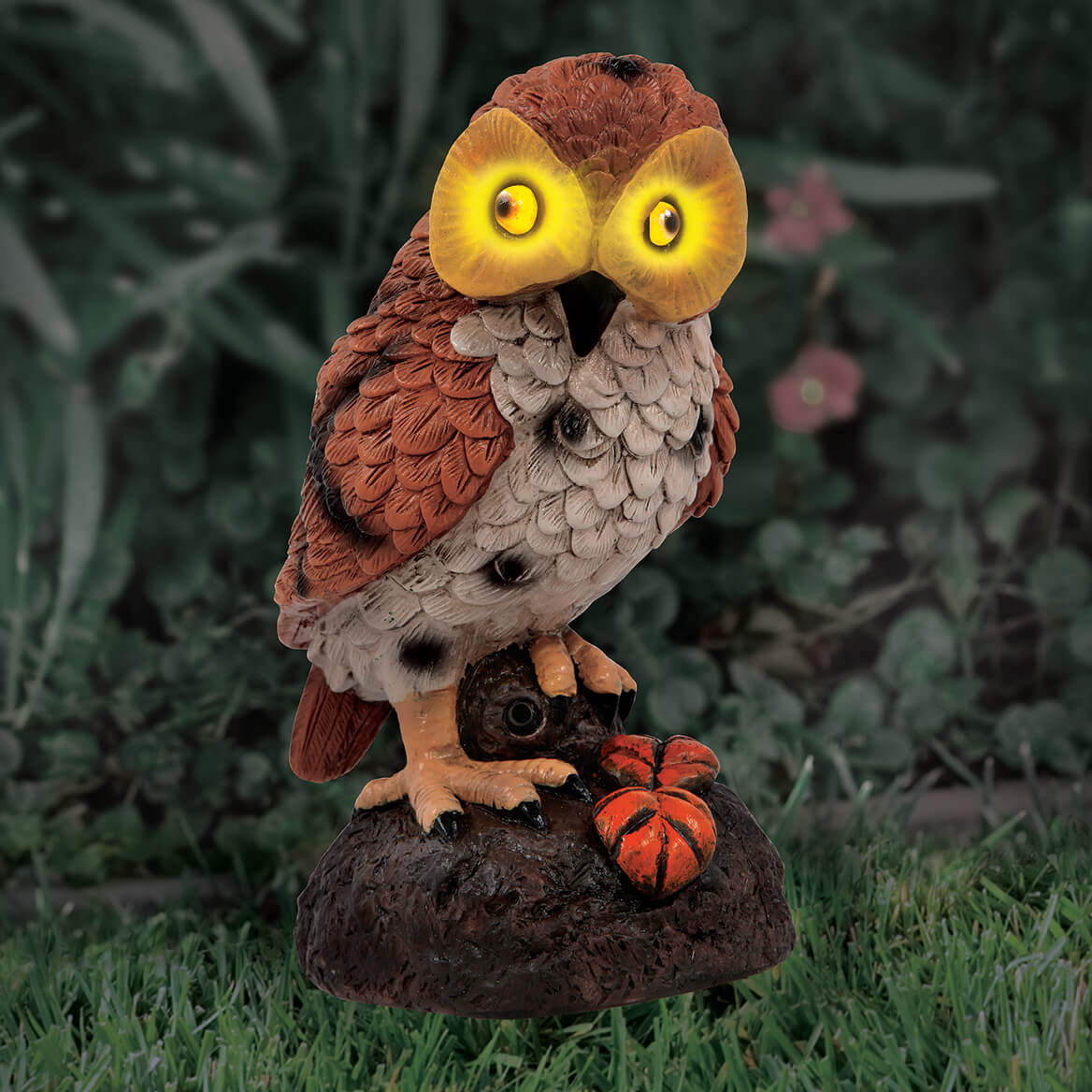 Hooting Garden Owl-369702