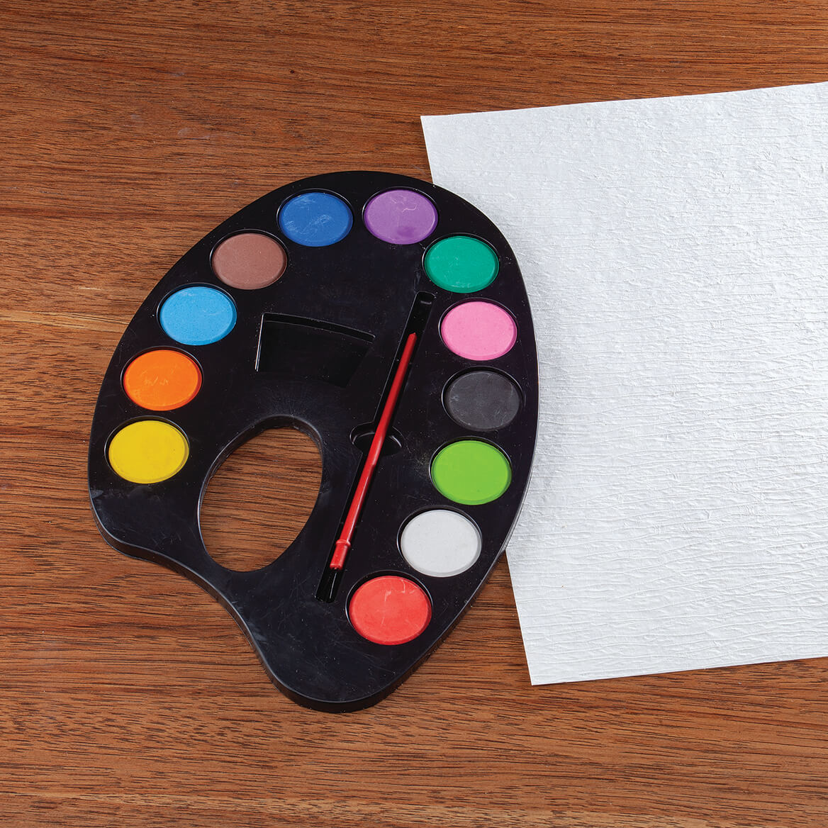 Watercolor Paint Artist Palette with Mixing Tray-371532