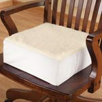 Cushions - Extra Thick Foam Chair Cushion
