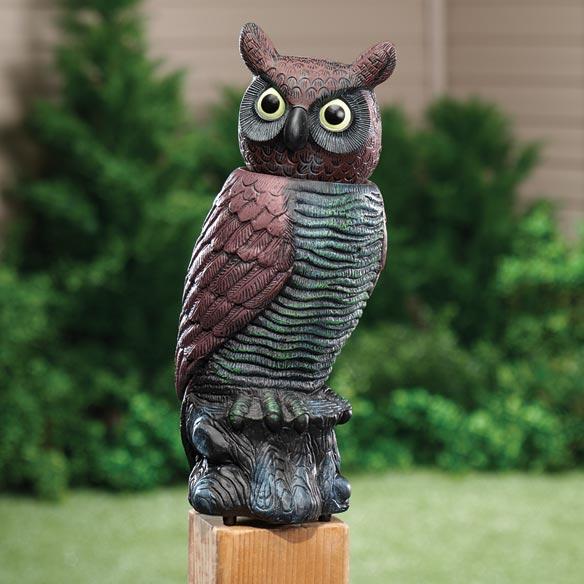 Motion Sensor Owl