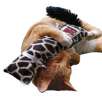 Pets - Kong Kickeroo Catnip Plush Cat Toy