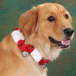 Pets - Christmas Dog Collar With Bells