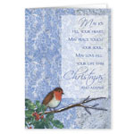 Winter Songbird Christmas Card Set/20