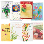 Memos, Notepads & Cards - All Occasion Cards Value Pack of 24