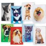 Memos, Notepads & Cards - Dog and Cat Blank Note Card Value Pack of 24