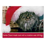 Labels & Stationery - Santa Claws Christmas Card Set of 20