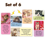 Kitten Magnets Set of 6