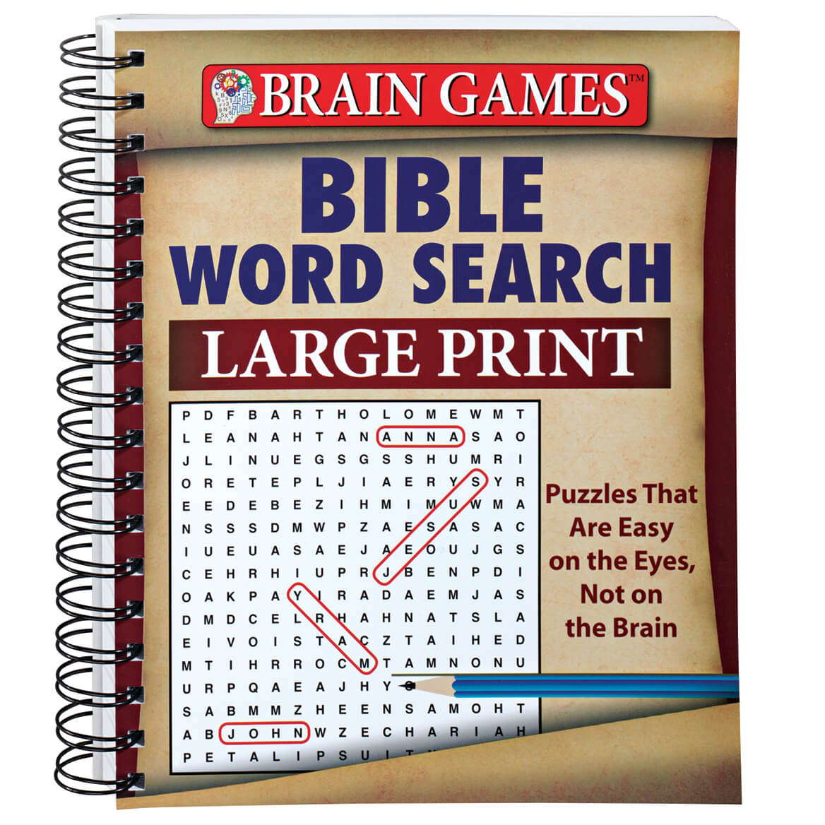Large Print Bible Word Search-342926