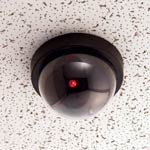 Titan Dummy Security Dome Camera