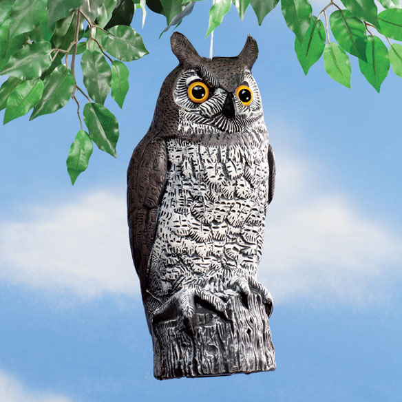 Plastic Owl Decoy