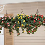 Lawn & Garden - Artificial Begonia Hanging Bush