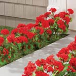 Artificial Red Geraniums