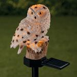 Pest Control - Solar White Owl Garden Stake