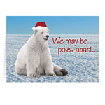Secular - Polar Bear Christmas Card Set of 20
