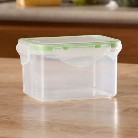 Locking Lid Storage Container, 2 Cup
