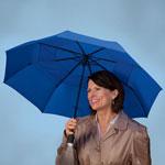 Auto & Travel - Windproof Lighted Umbrella