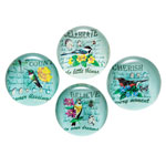 Closeout Deals - Inspirational Glass Bird Magnets - Set of 4
