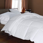 Closeout Deals - Microfiber Down Alternative Comforter