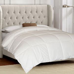 Bedroom Basics - 100% Cotton White Goose Down and Feather Comforter