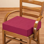 "Health, Beauty & Apparel - 4"" Foam Seat Cushion"