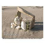 View All Christmas Cards - Seashore Nativity Non Personalized Christmas Card Set of 20