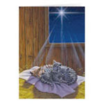 View All Christmas Cards - The Legend of the Tabby Personalized Christmas Card - Set of 20