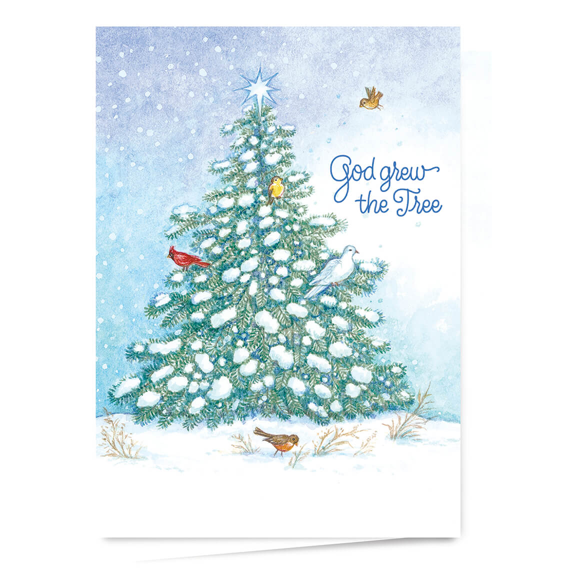 God Grew the Tree Personalized Christmas Card - Walter Drake