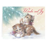 Secular - Wonder and Joy Personalized Christmas Card - Set of 20