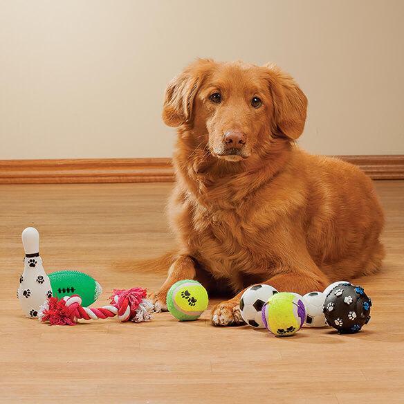 Sports Pet Toys, 7-Piece Set Give your playful pooch everything needed to stay busy, active and entertained with this Sports Pet Toys 7-Pc. Set! Great for fetching, chasing, tugging and enjoying interactive fun with you, this dog toy set includes 1 rope toy, 2 tennis balls, 1 bowling pin, 1 football, 1 soccer ball toy and 1 textured ball covered in cute paw prints. Clean before use; hand wash only.