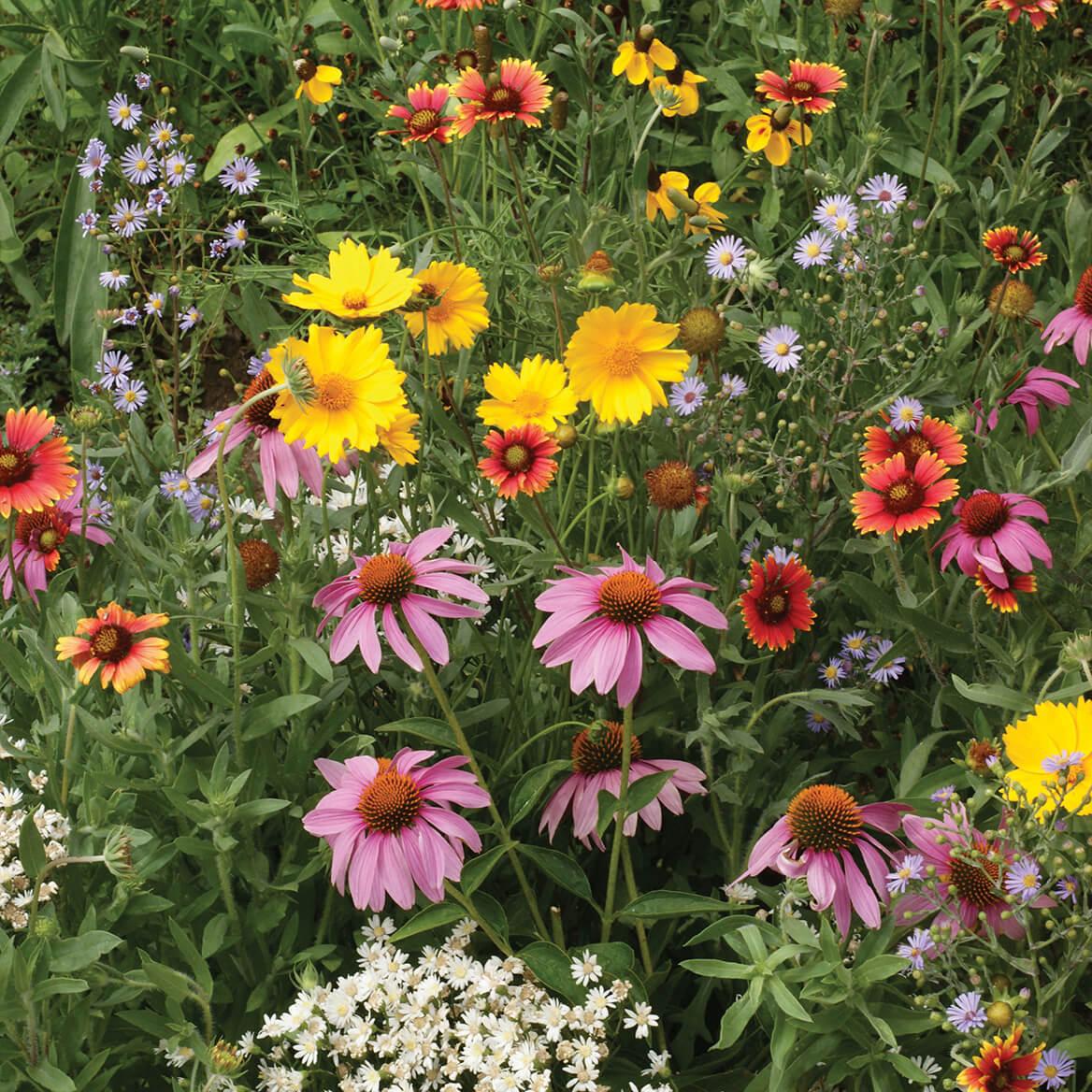 Honeybee Garden Flower Mat-367363