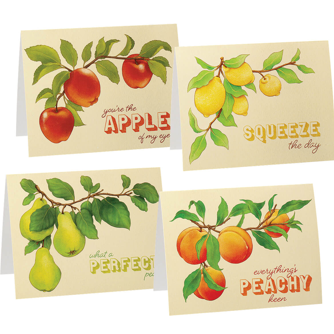 Cute Fruit Note Cards set of 20-370824