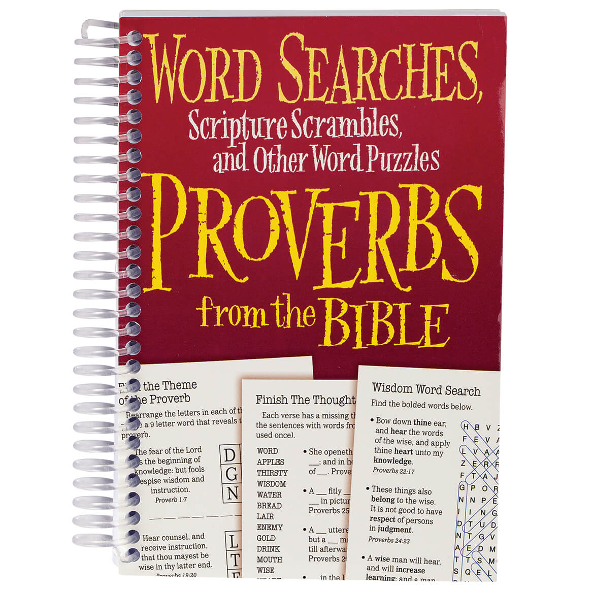 Word Puzzles Proverbs from the Bible Book-371709