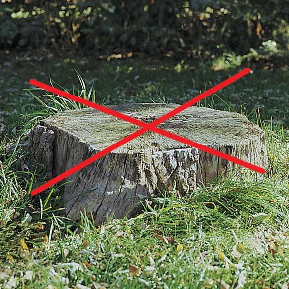 Tree Stump Remover - View 1