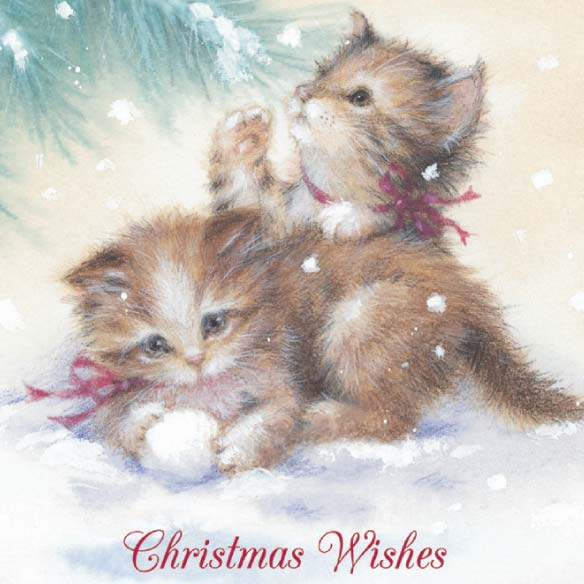 Kitten Christmas Card Set of 20 - View 4