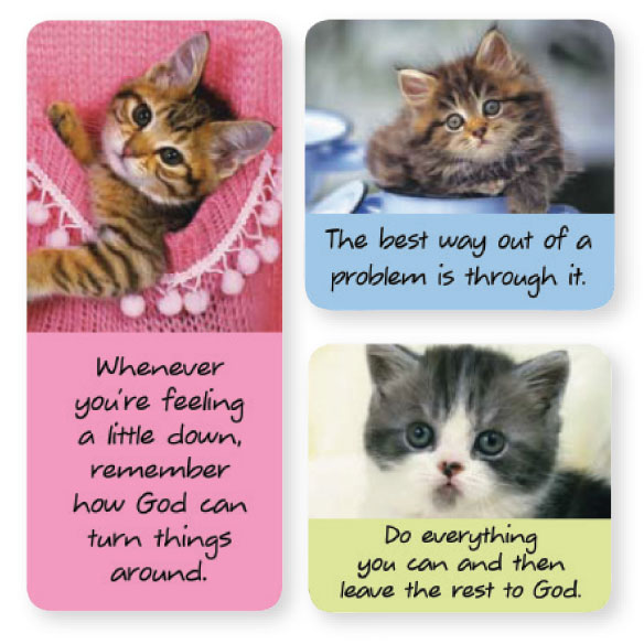 Kitten Magnets - Set of 6 - View 2