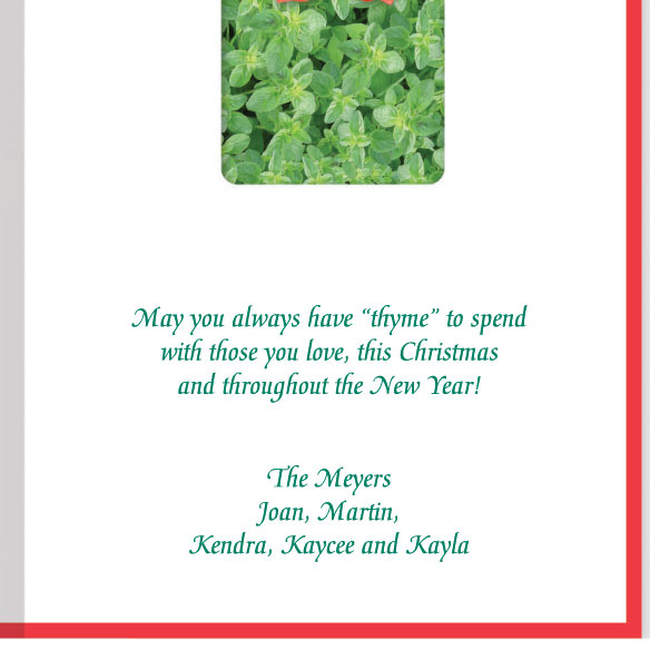 Holiday Thyme Christmas Card Set of 20 - View 3