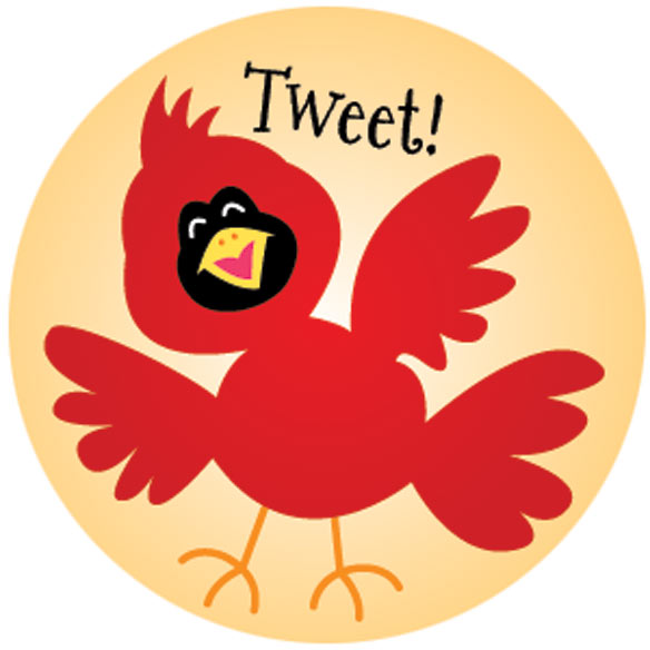 Silly Bird Stickers - Set Of 144 - View 2