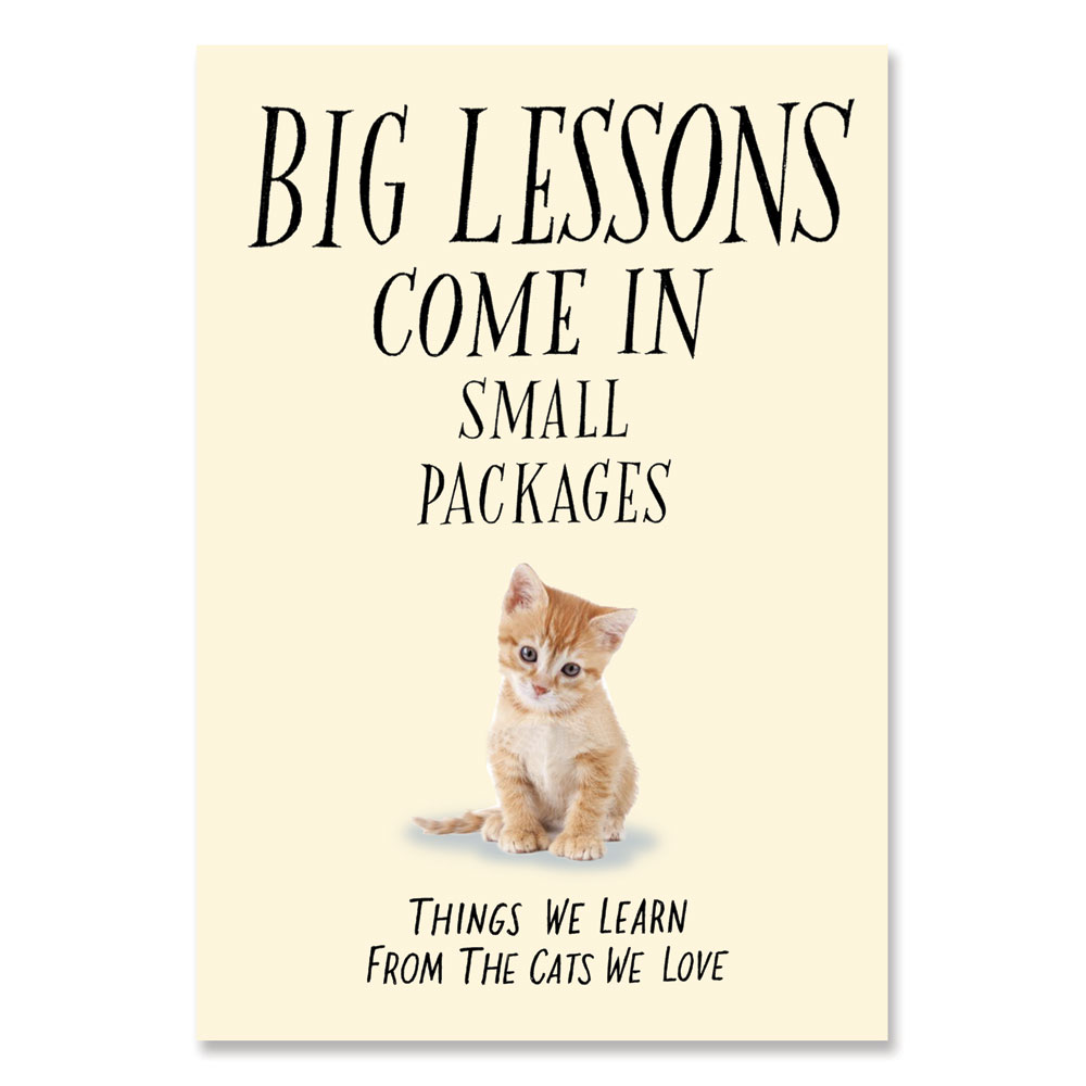 Big Lessons Come in Small Packages Big Lessons Come in Small Packages shows us there are many big lessons we can learn from our small, furry companions. They teach us to slow down and enjoy the simple joys of life, to reach out to those in need, to be patient and wise and loving. Having cats in our lives will always be one of life's most wonderful blessings. Softcover inspirational book, 144 pages. 7  long x 4 3/4  wide.
